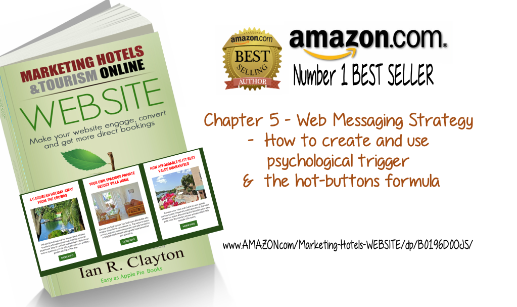 Website Strategic Process - Chapter Bonus for Book Buyers