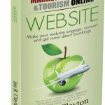 Hotel WEBSITE strategies in Paperback
